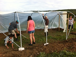 polytunnel-gang-2