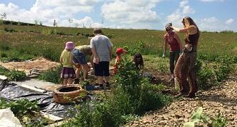 community-gardeners-3