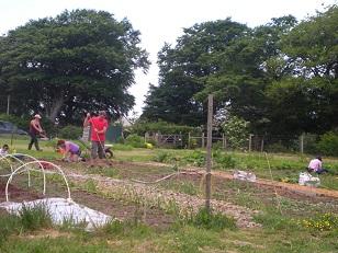 community-gardeners7